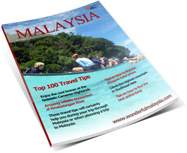 Free eBook Top 100 Tips Malaysia