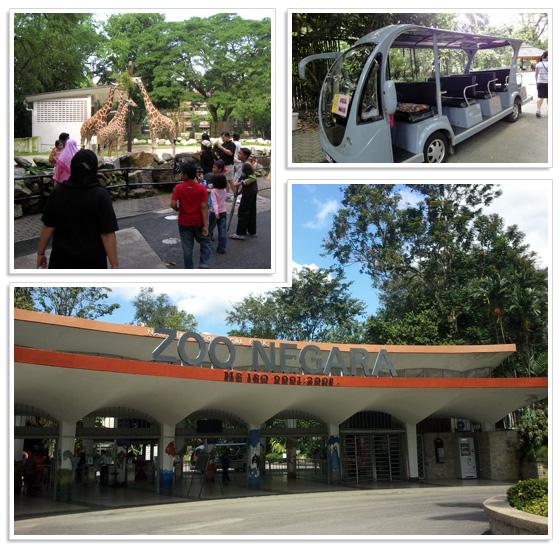 Kuala Lumpur national zoo