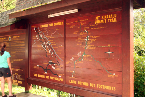 Kinabalu National Park 6