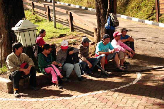 Kinabalu National Park 7
