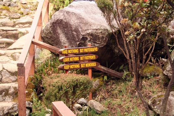 Kinabalu National Park 8