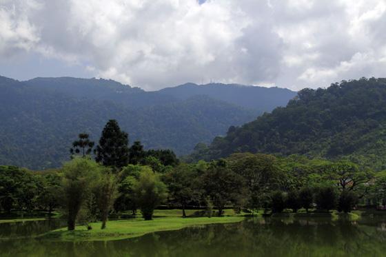 Taiping Bukit Larut (Maxwell Hill) 1