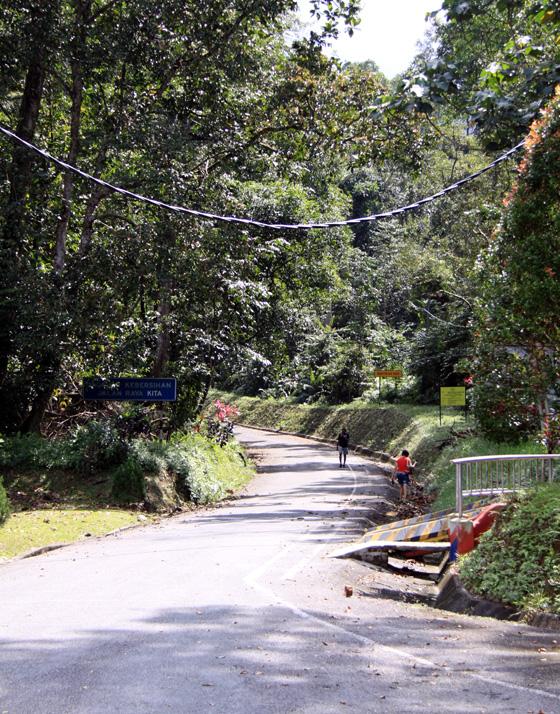 Taiping Bukit Larut (Maxwell Hill) 2