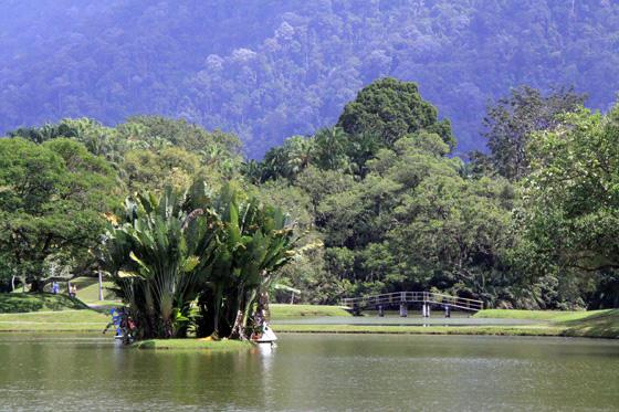 Taiping Taman Tasik 2
