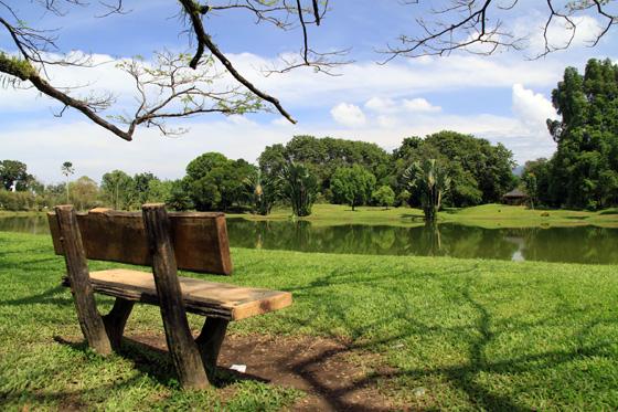 Taiping Taman Tasik 3