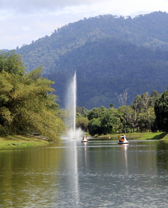 Taiping Taman Tasik 5