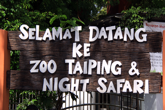 Taiping Zoo & Night Safari 1