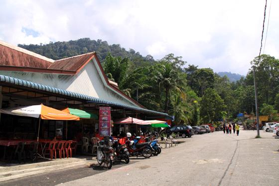 Bukit Larut (Maxwell Hill) 1
