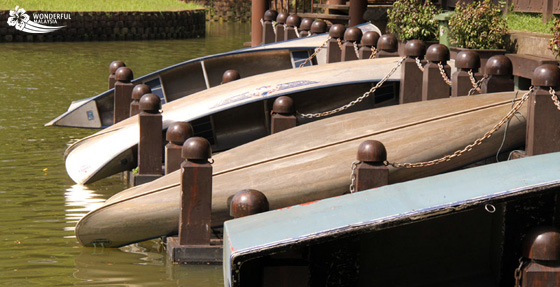 boats lake gardens