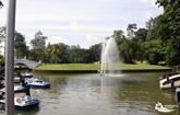 fountain lake gardens thumb