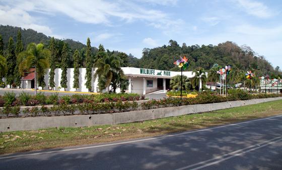 bird-paradise-wildlife-park-langkawi-1