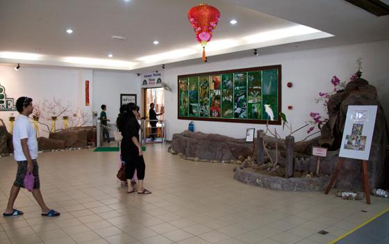 bird-paradise-wildlife-park-langkawi-5