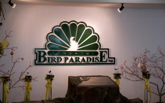 bird-paradise-wildlife-park-langkawi-6