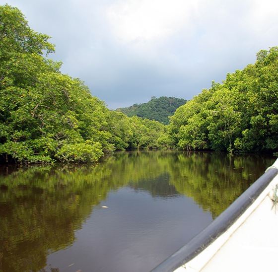 cherating-river-cruise-3