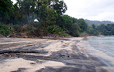 Black Sand Beach at Langkawi Island