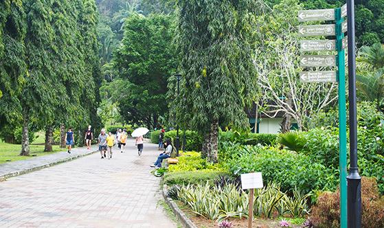 botanic-gardens-penang-2
