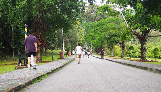 botanic-gardens-penang-6