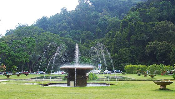 botanic-gardens-penang-8