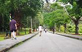 Botanic Gardens, Penang