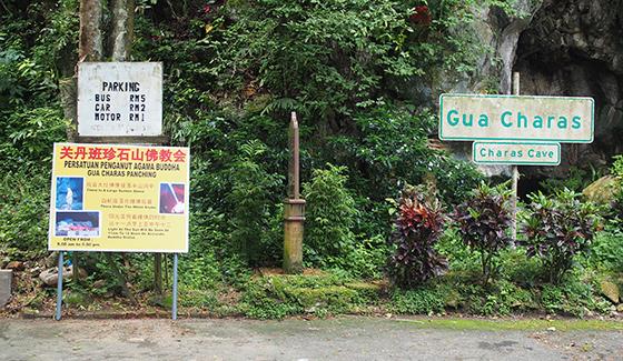 charah-caves-pahang-malaysia-2