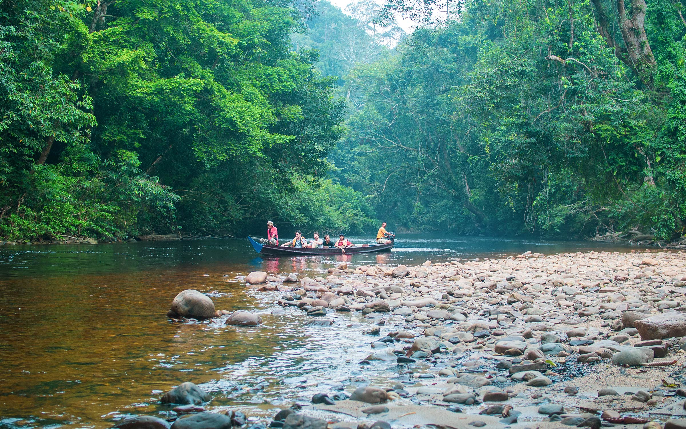 Top 5 Wildlife Destinations in Malaysia