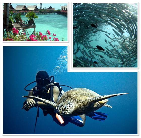 Scuba diving at islands around Borneo, Malaysia