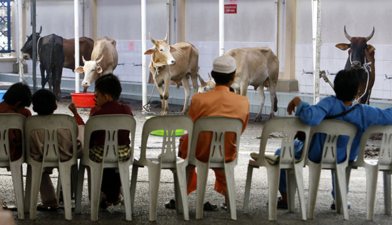 Eid al-Adha   FAQ   Wonderful Malaysia