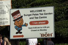 Trip Cameron Highlands BOH sign