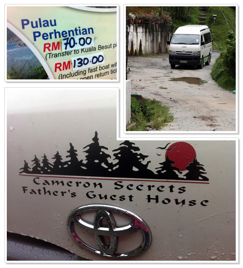 Transport from Cameron Highlands to Perhentian or Taman Negara