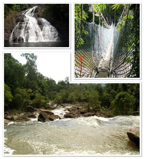 Endau-Rompin National Park 1