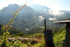Kota Kinabalu national park