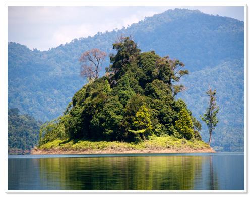 Small Island at Lake Kenyir