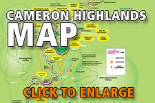 Map Cameron Highlands