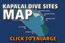 Map dive spots Kapalai