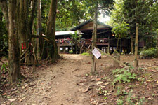 KJC along the river banks of Kinabatangan River