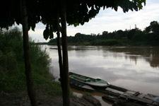 Kinabatangan River 2