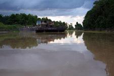 Kinabatangan River 3