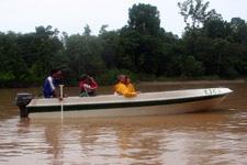 Tourists on river cruise along Kinabatangan River
