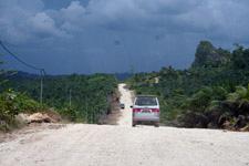 Kinabatangan Trip Palm Oil Plantations