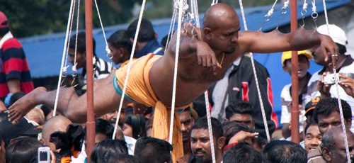Man hanging from hooks during Thaipusam