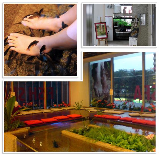 Kenko Fish Spa in shopping mall Pavilion KL